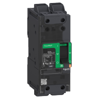 PowerPact-circuit breaker-80A 2P AC 65kA at 480/440V(UL/IEC)-TMD-EverLink lug