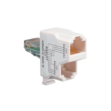 adptr network rj45 data/voice
